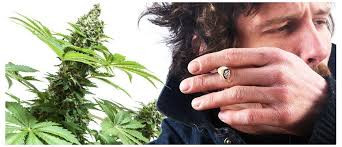 How to smoke weed without coughing