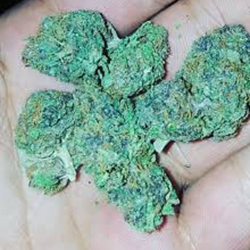 Blue Magic weed
