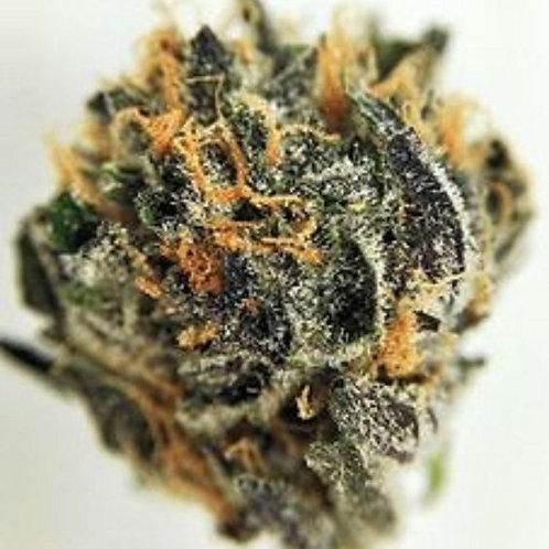 SR-71PK cannabis strain