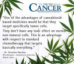 How cannabinoids kill cancer