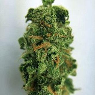 BubbaKushcannabis strain