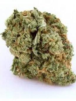 Quick One marijuana strain