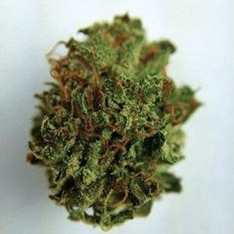 MartianKushmarijuana strain