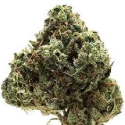 Buy Painkiller Marijuana strain