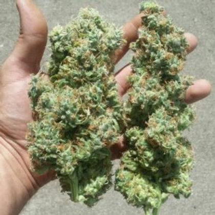Vertigo marijuana strain