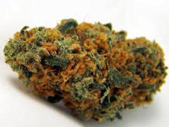 Garlic Bud marijuana strain