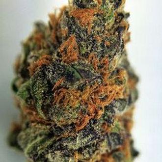 Chiesel marijuana strain