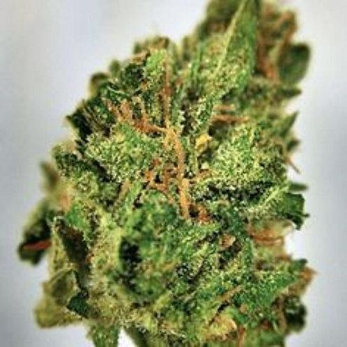 LA Affie marijuana strain
