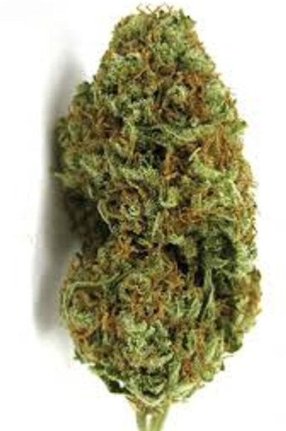 Carnival marijuana strain