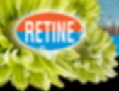 chrysanten, kwekerij, chrysantenkwekerij, bloemkwekerij, bloemenkwekerij tuil