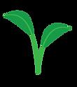 Logo_FNVRC-V.png