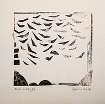 Birds in Flight, 2017