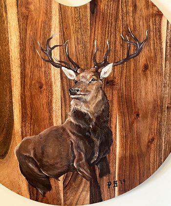 Stag on Wooden Board