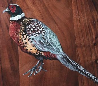 Pheasant- Commission