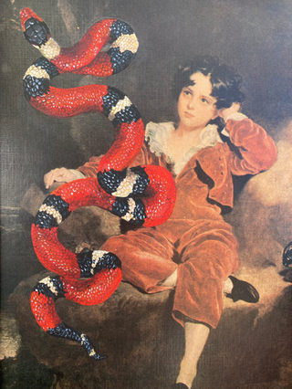 Boy and snake