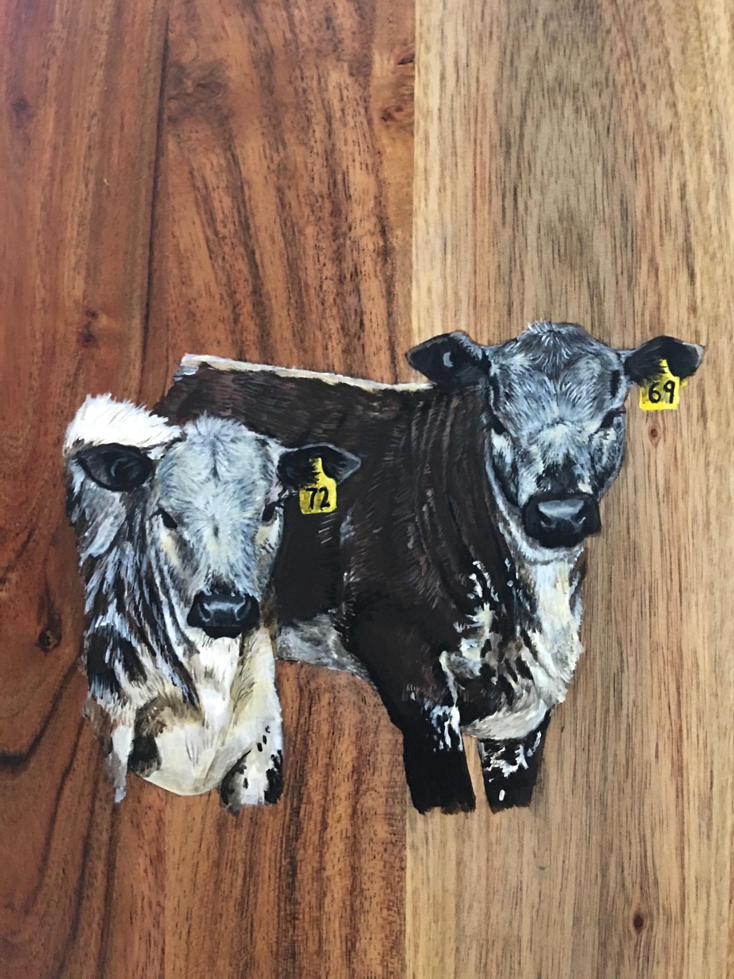 Cows- Commisson