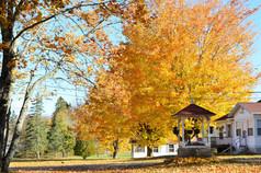 Eden Village Autumn