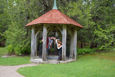 Thuya Garden Acadia