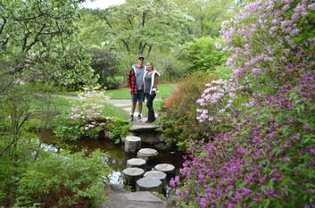 Asticou Gardens Acadia