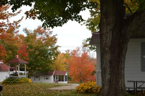 Eden Village in the Fall