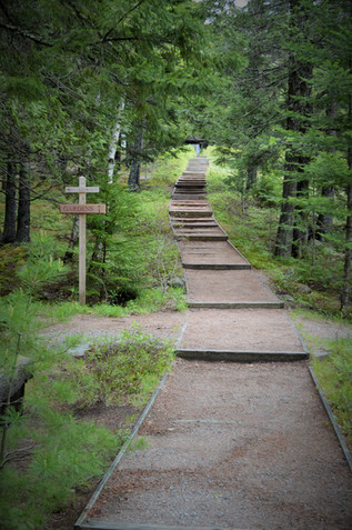 Asticout Terrace Trail Acadia