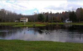 The Pond at Eden Village