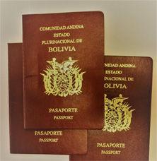 pasaporte222x228.jpg