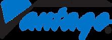 Diamond Vantage Logo.png