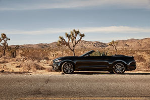 Ford_Mustang_peterundpeter0918.jpg