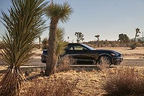 Ford_Mustang_peterundpeter0916.jpg