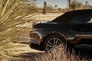Ford_Mustang_peterundpeter0921.jpg