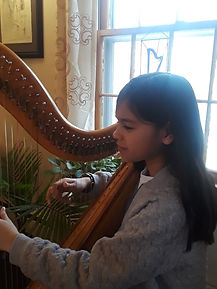 maryland harp lessons