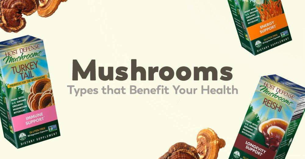 mushroom-supplements-health-benefits