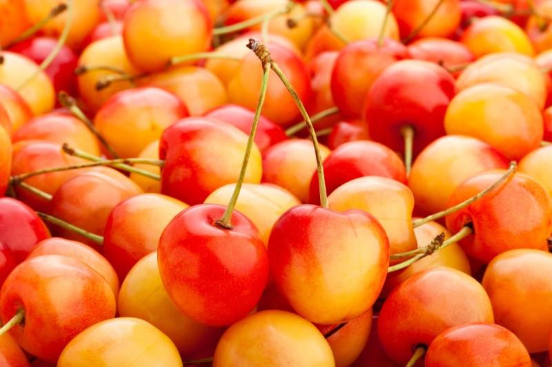 superfood saturday: cherries