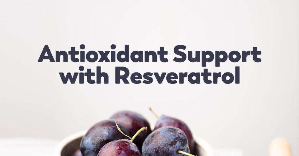 resveratrol-grapes-red-wine-benefits