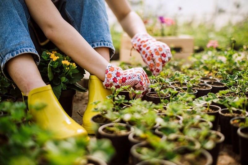 gardening stress