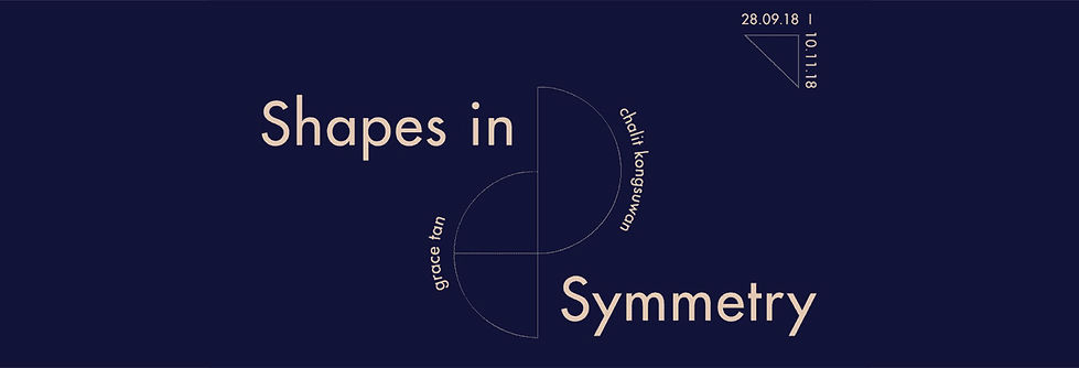 shapes in symmetry-01.jpg