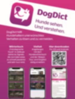 DIct App.jpg