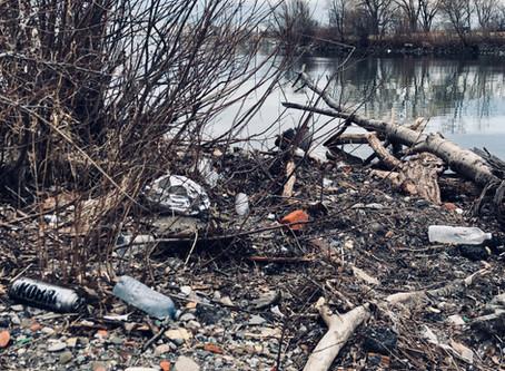 Plastic Bans Are Not Enough