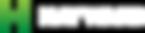 logo-hayward-white.png