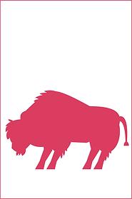 steffan_bison.png