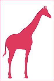 dim_girafe.png