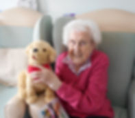 Care Home 7 dog.jpg
