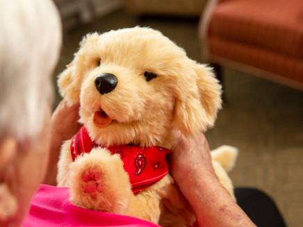 8 Benefits of Robotic Companion Pets