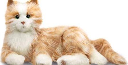 Joy For All - Orange Cat