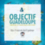 Objectif Guadeloupe - Vignette Campagne
