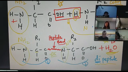 Online Lesson; Chemistry