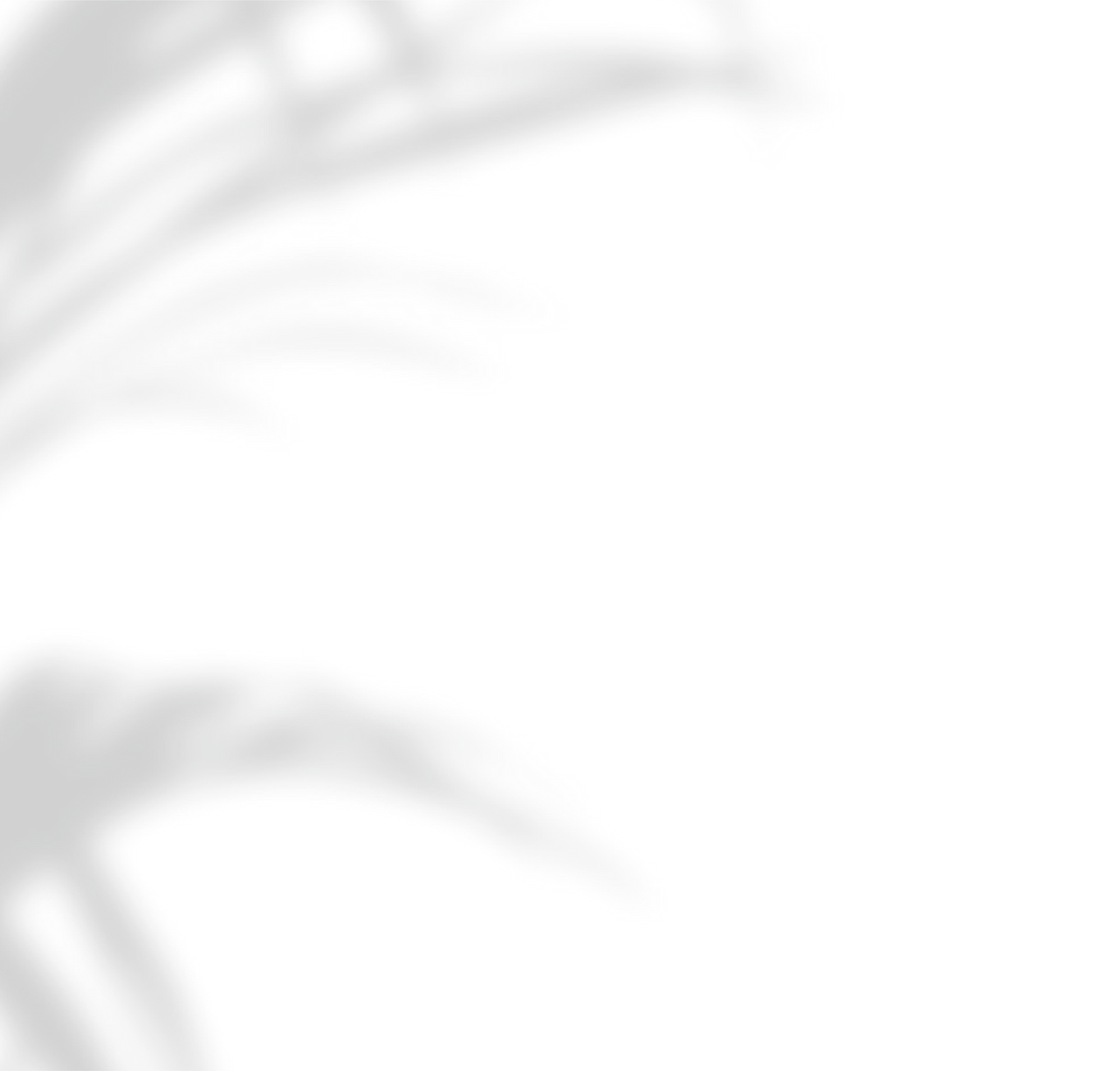Shadow.png