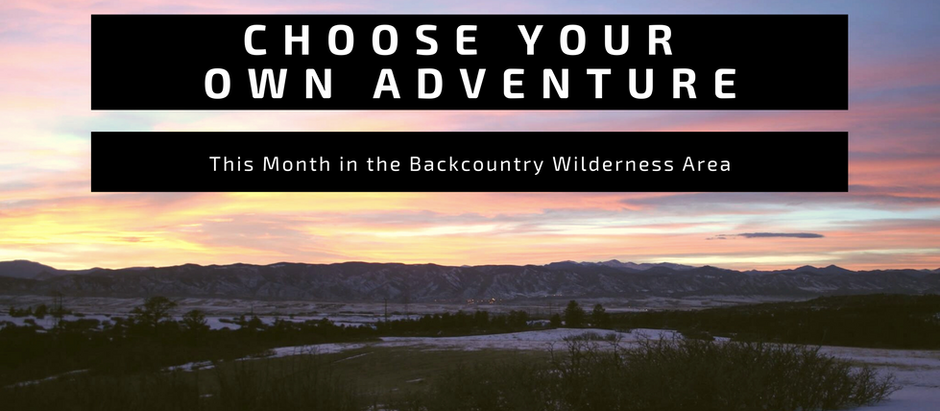 Choose Your Adventure: January 2021