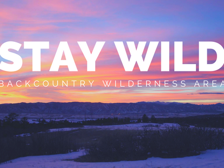 Why Does the Backcountry Wilderness Area Matter?
